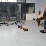Salon des cinéphiles 2016 araignée géante